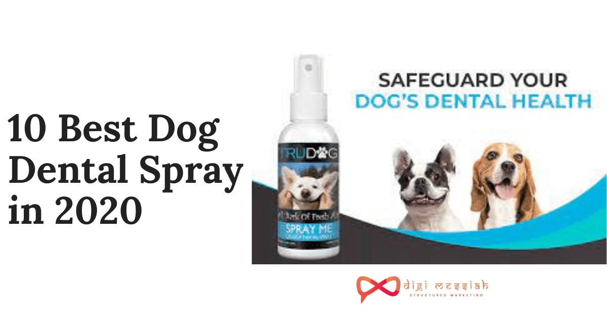 10 Best Dog Dental Spray in 2020
