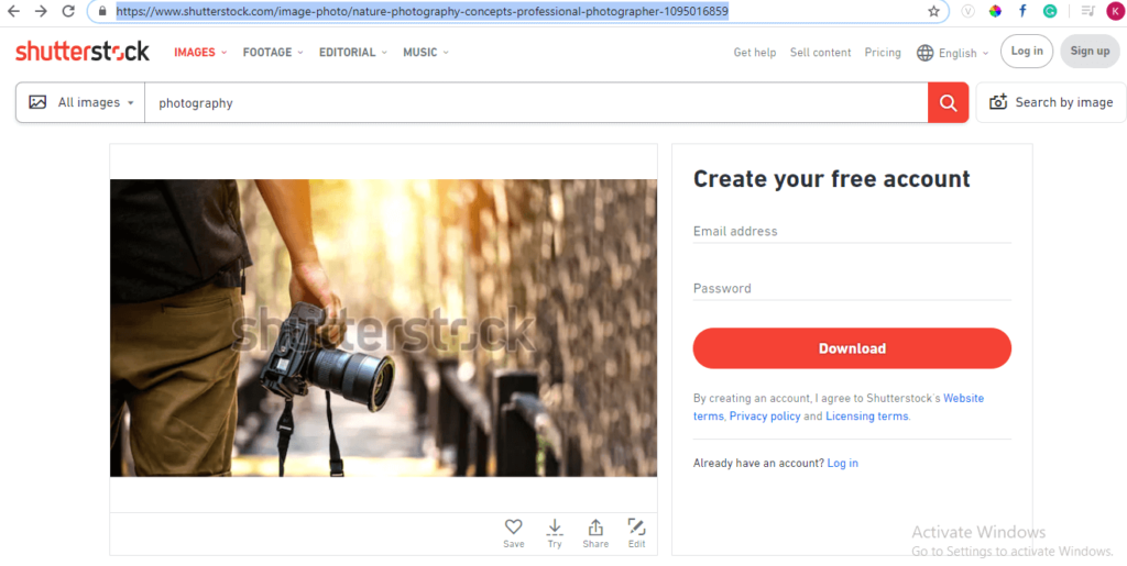 copy the browser URL for shutterstock free image