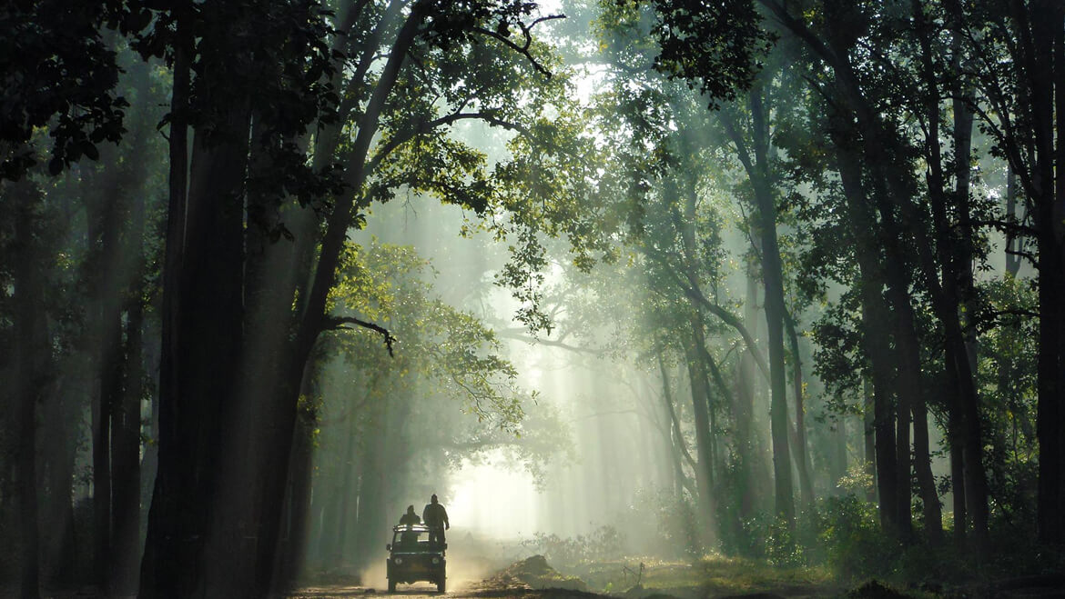 Jim-Corbett top India places to visit (1)