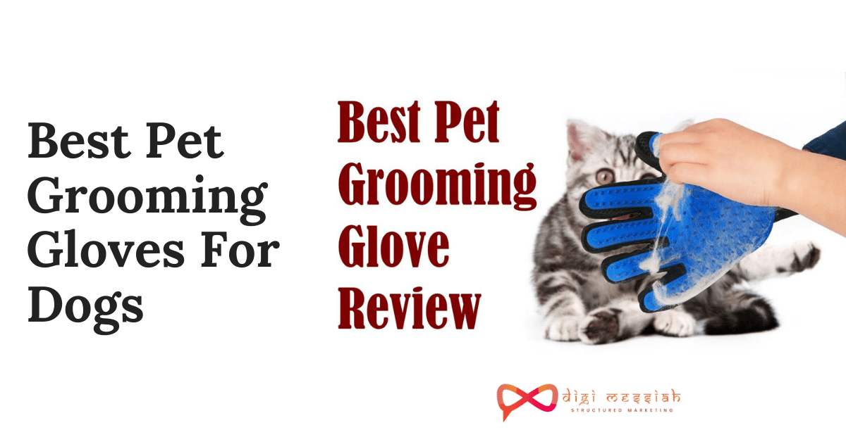 Best Pet Grooming Gloves For Dogs