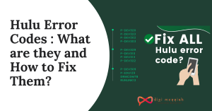 Hulu Error Codes _ What are they and How to Fix Them_
