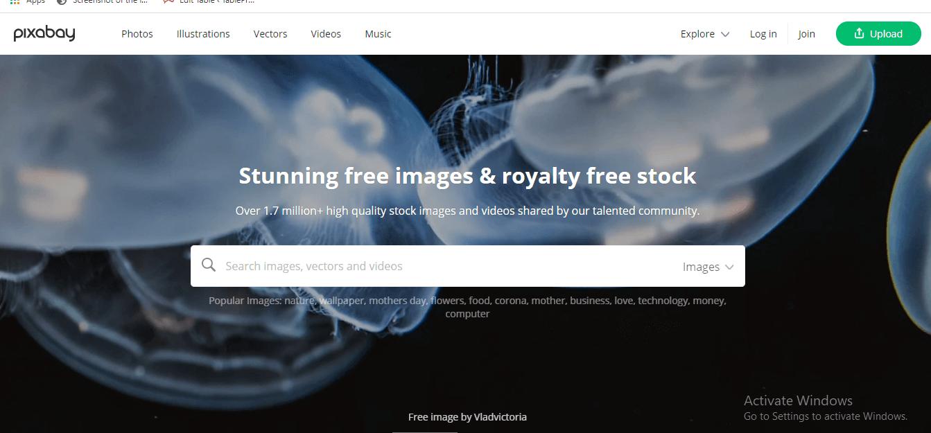Pixabay - website- download-vector-images (1)