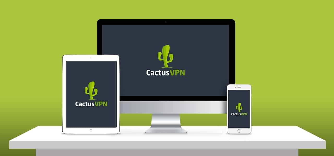 Cactus VPN Reviews